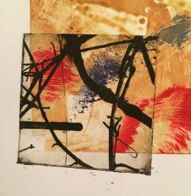The combination of solar and mono prints