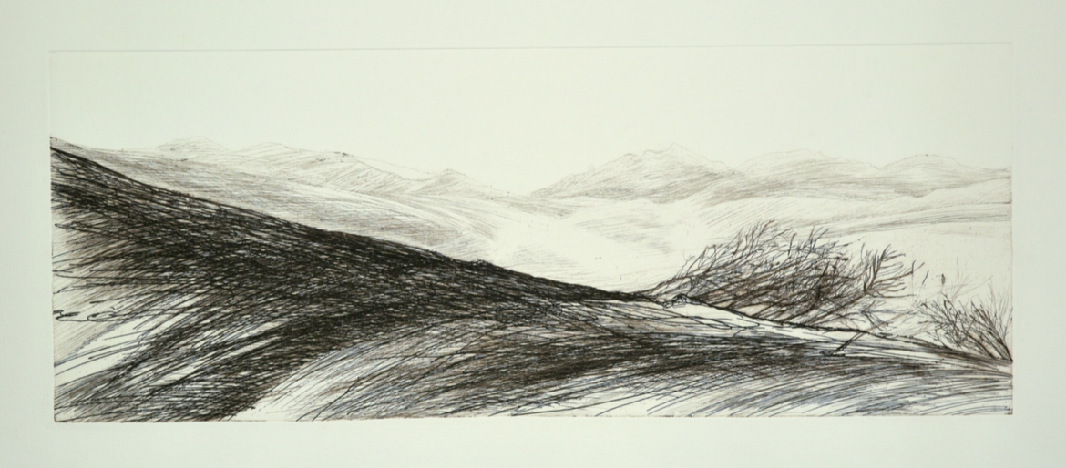 The etching was made by Adriana Salazar Lamadrid